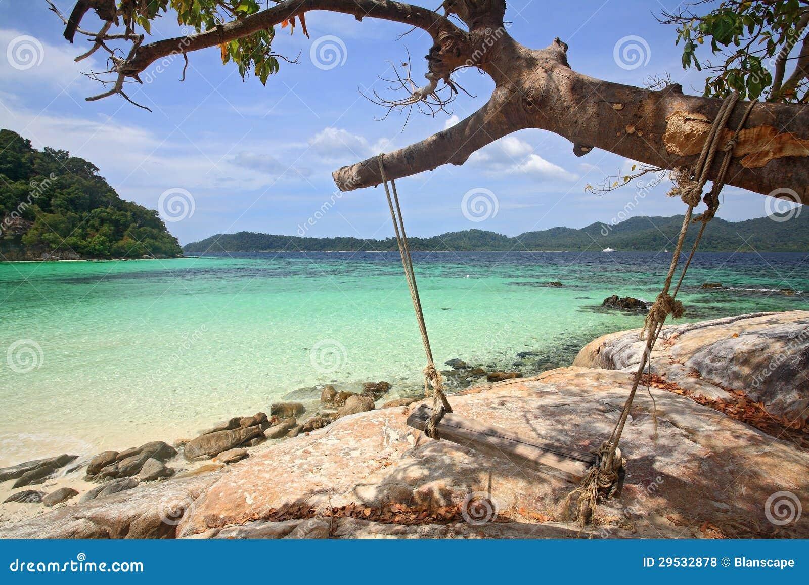 Balanço de madeira que pendura na árvore na praia tropical