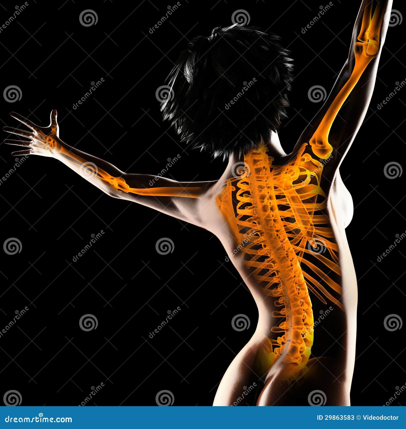 Balayage de radiographie de femme
