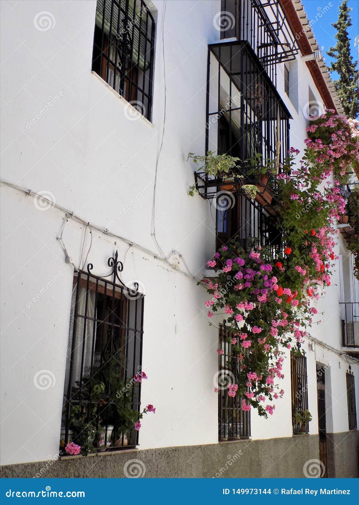 Balcões e janelas com as flores do Albayzin-Granada - a Andaluzia