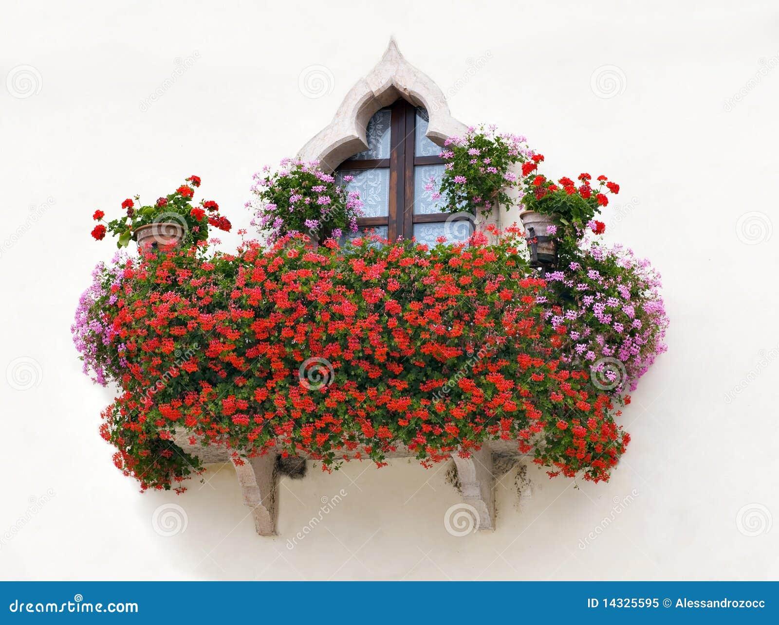Balcone con i fiori dentellare e rossi fotografia stock for Fiori balcone perenni