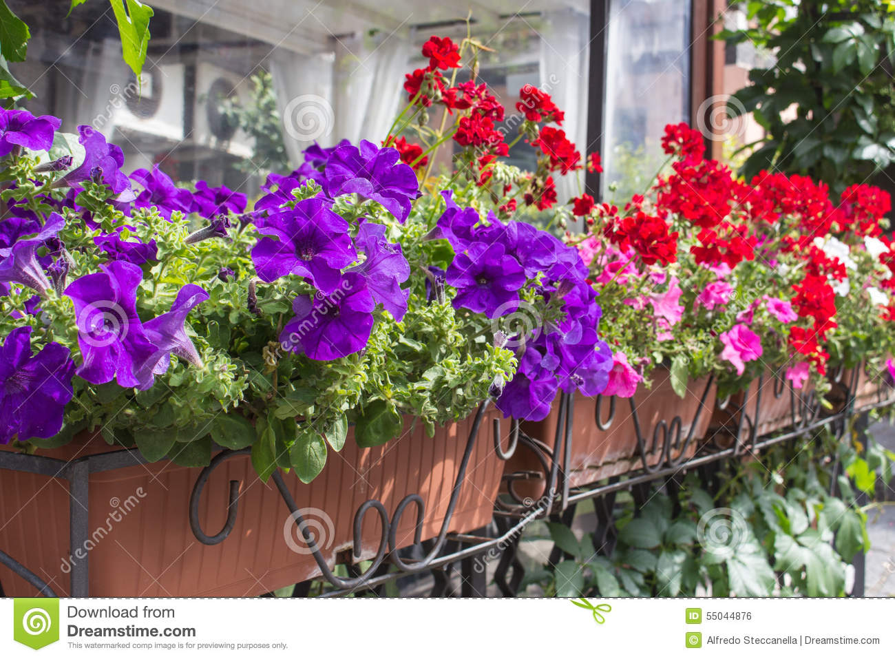 Balcony flower boxes filled with flowers royalty free for Balcony flowers