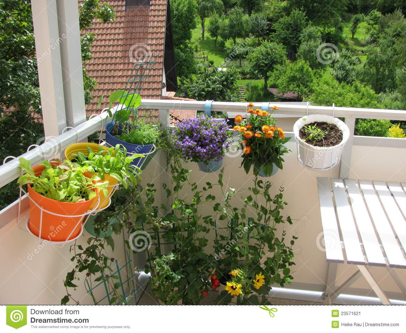 Balcony with flowers and vegetables stock image image for Balcony vegetable garden