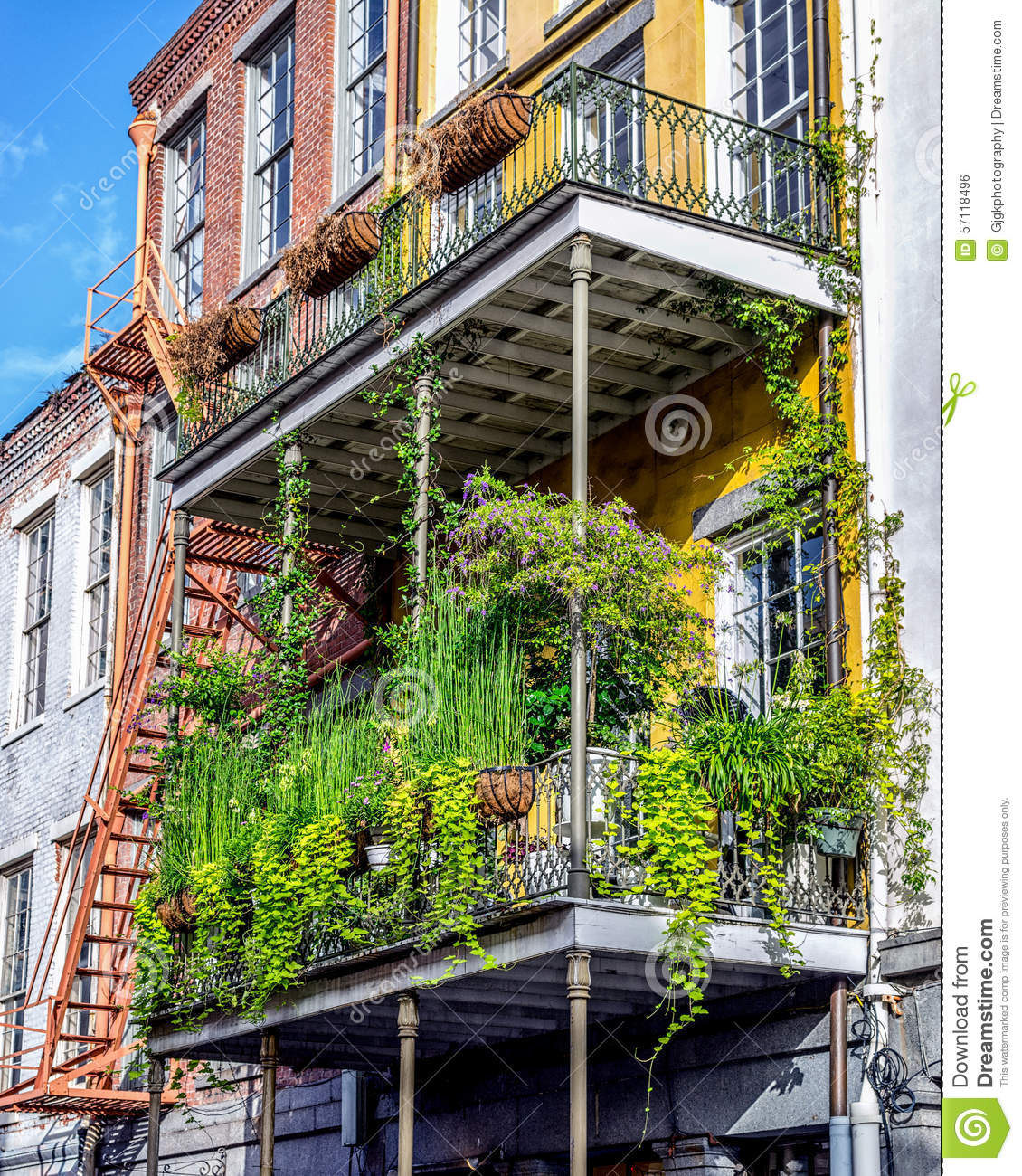 Balcony with plants 11 in the french quarter new orleans for Balcony french