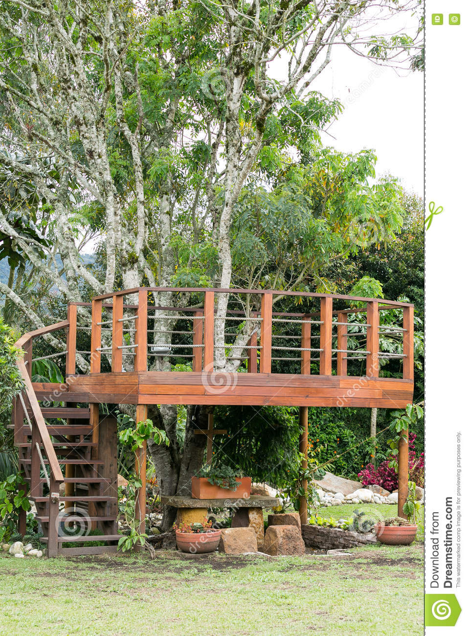 Download Balcony Wooden Platform Around A Tree Stock Photo   Image Of  Around, Garden: