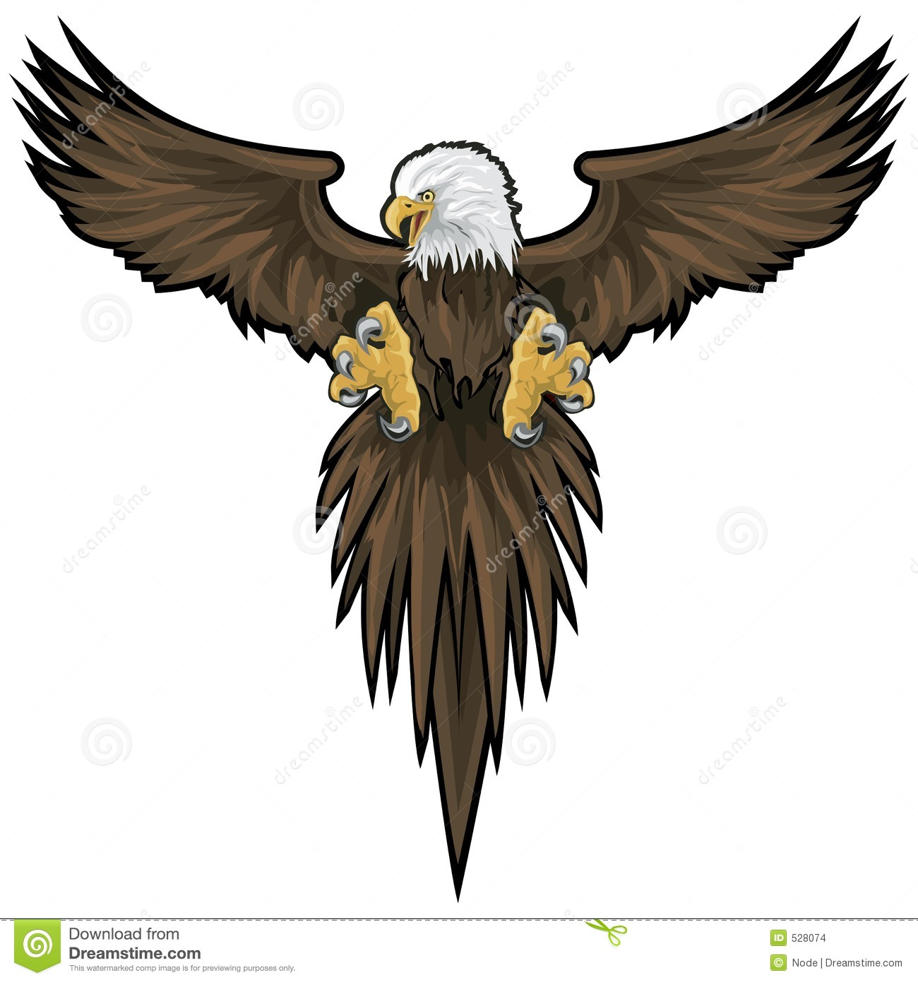 Bald Eagle  Eagle Wings Spread