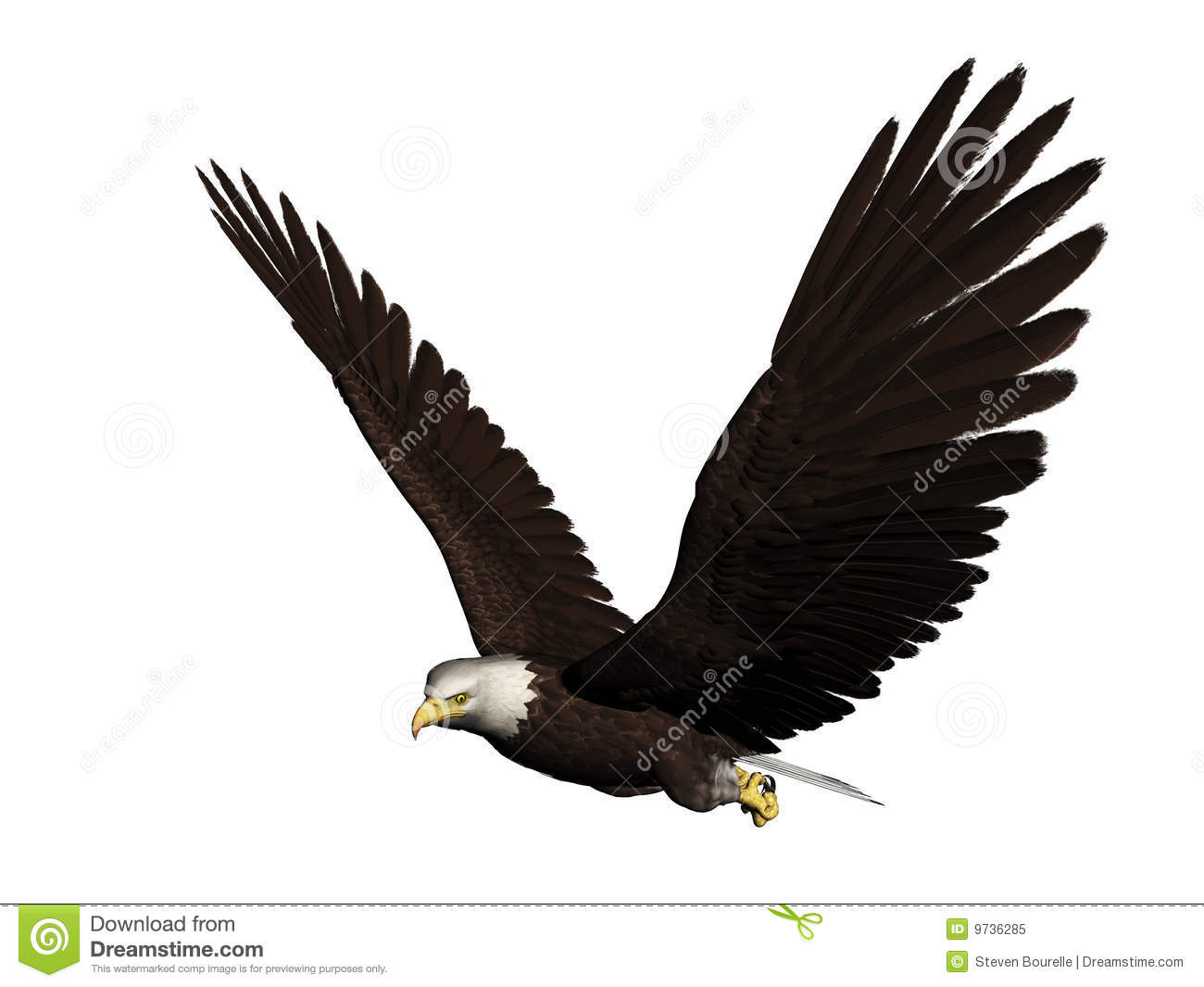 bald eagle render by - photo #16