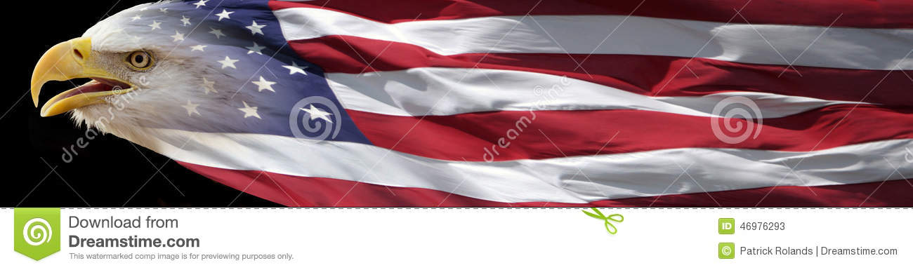 bald eagle and american flag banner stock image image of