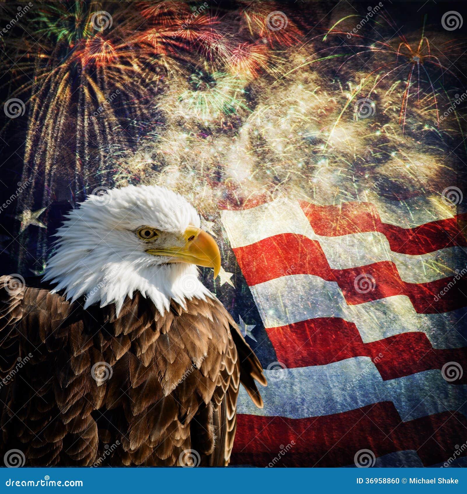 Bald Eagle & Fireworks