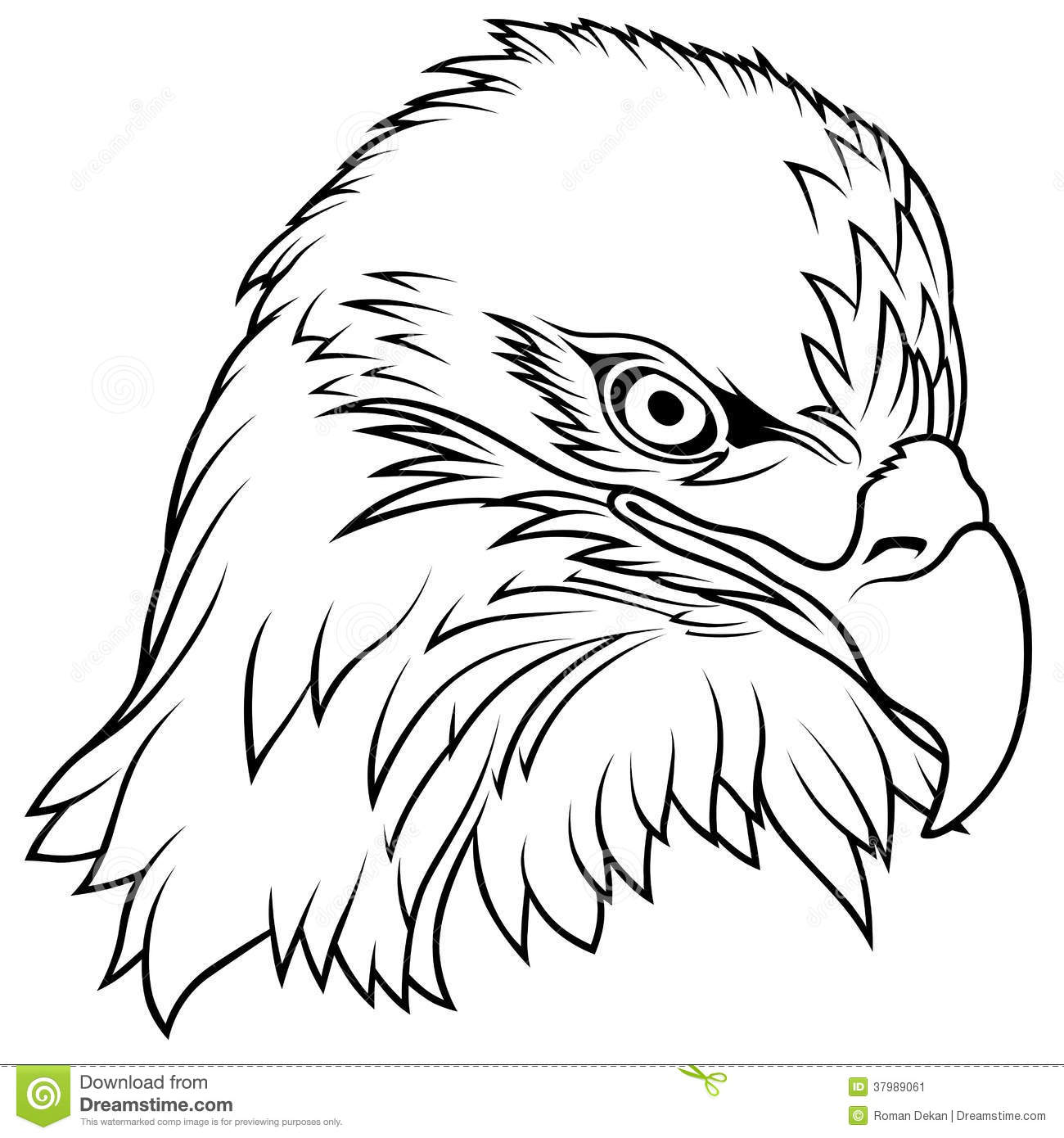 Free An Eagle Head Coloring Pages