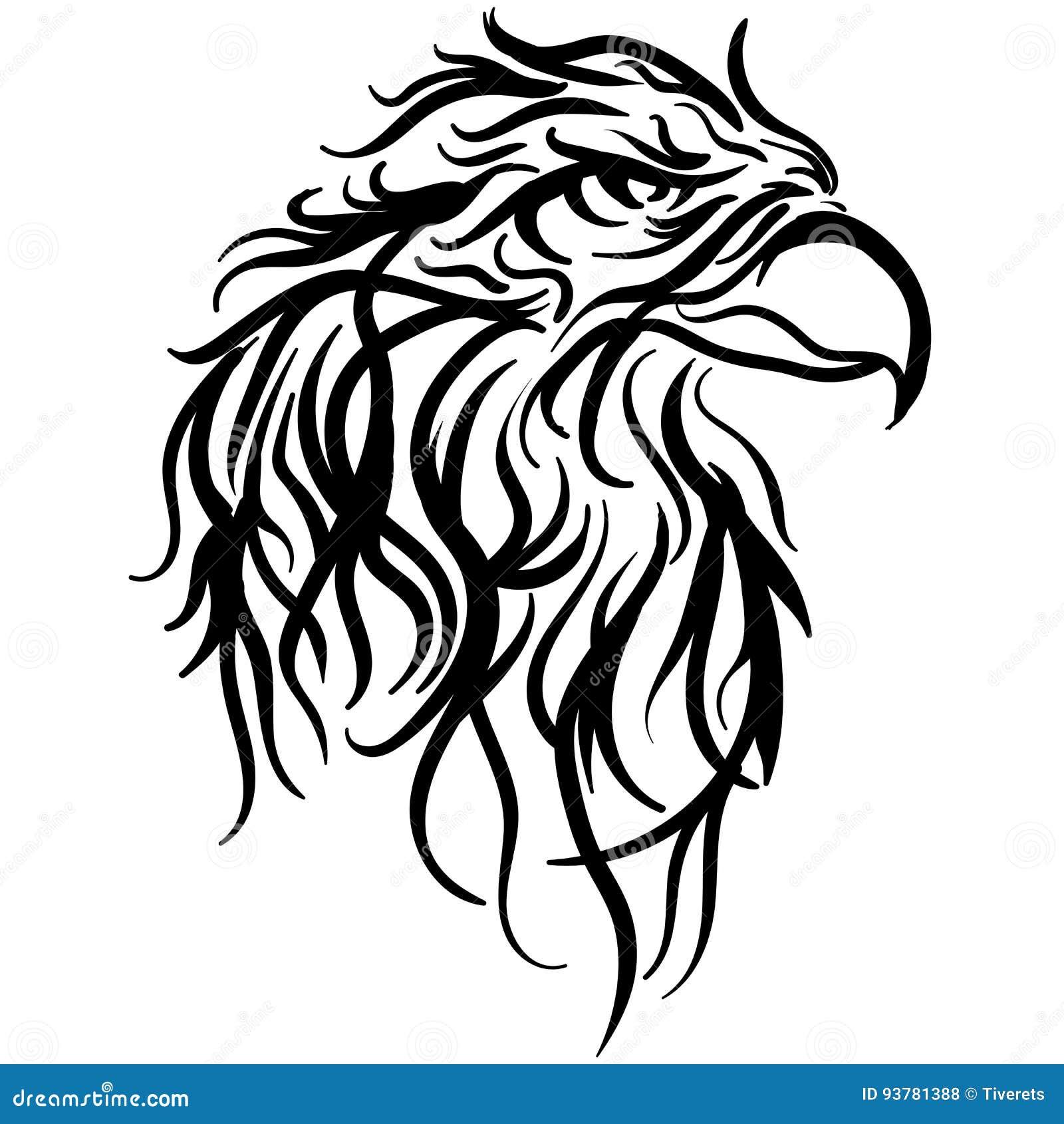 Bald Eagle Head Vector Illustration Sketch
