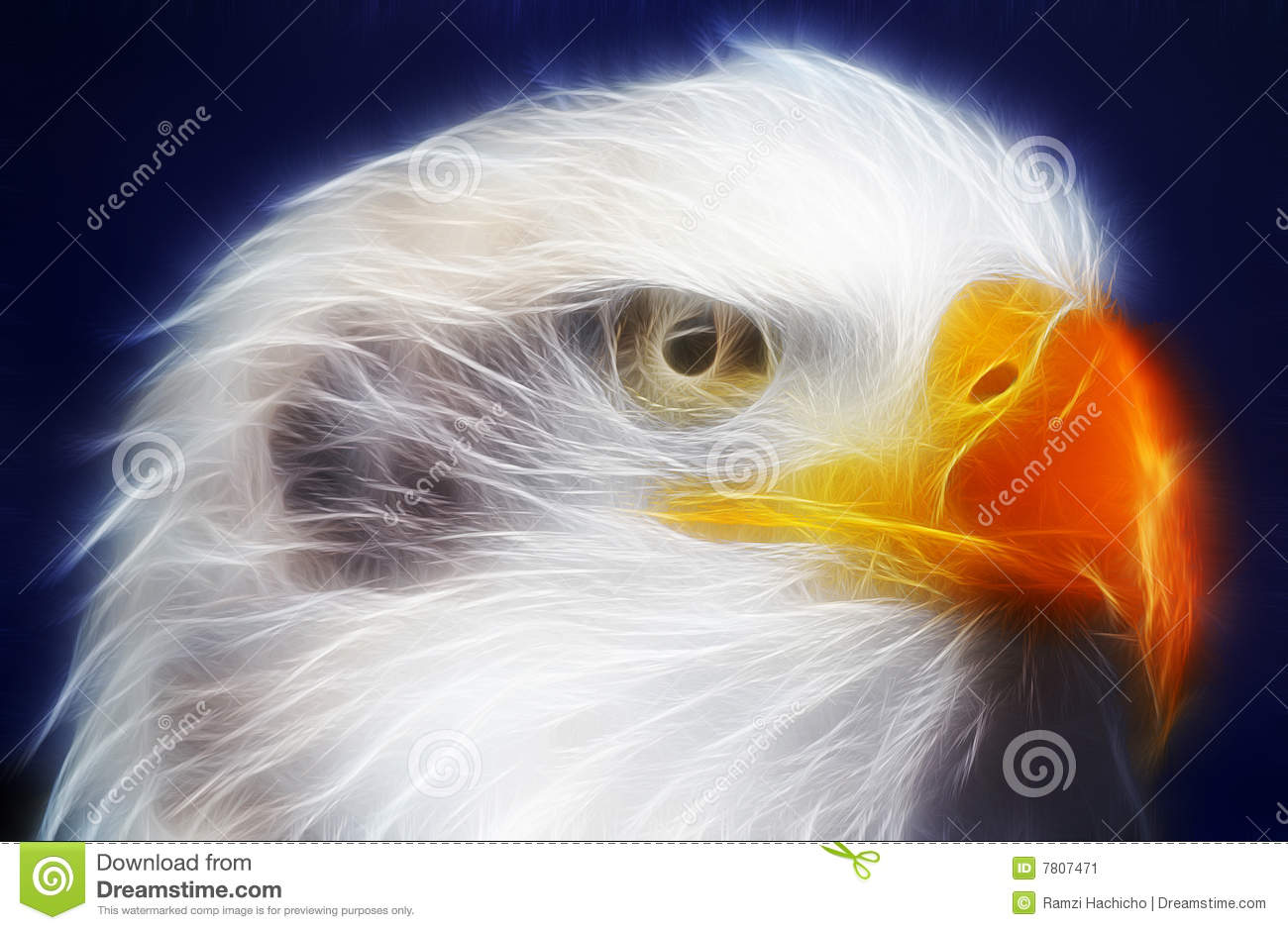 Bald Eagle Rendered With Electrical Light Rays Stock Image - Image ...