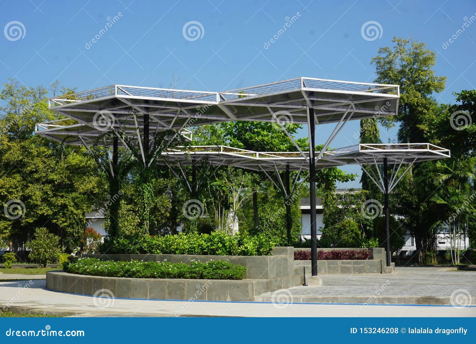 Baldacchini tropicali solari della pianta