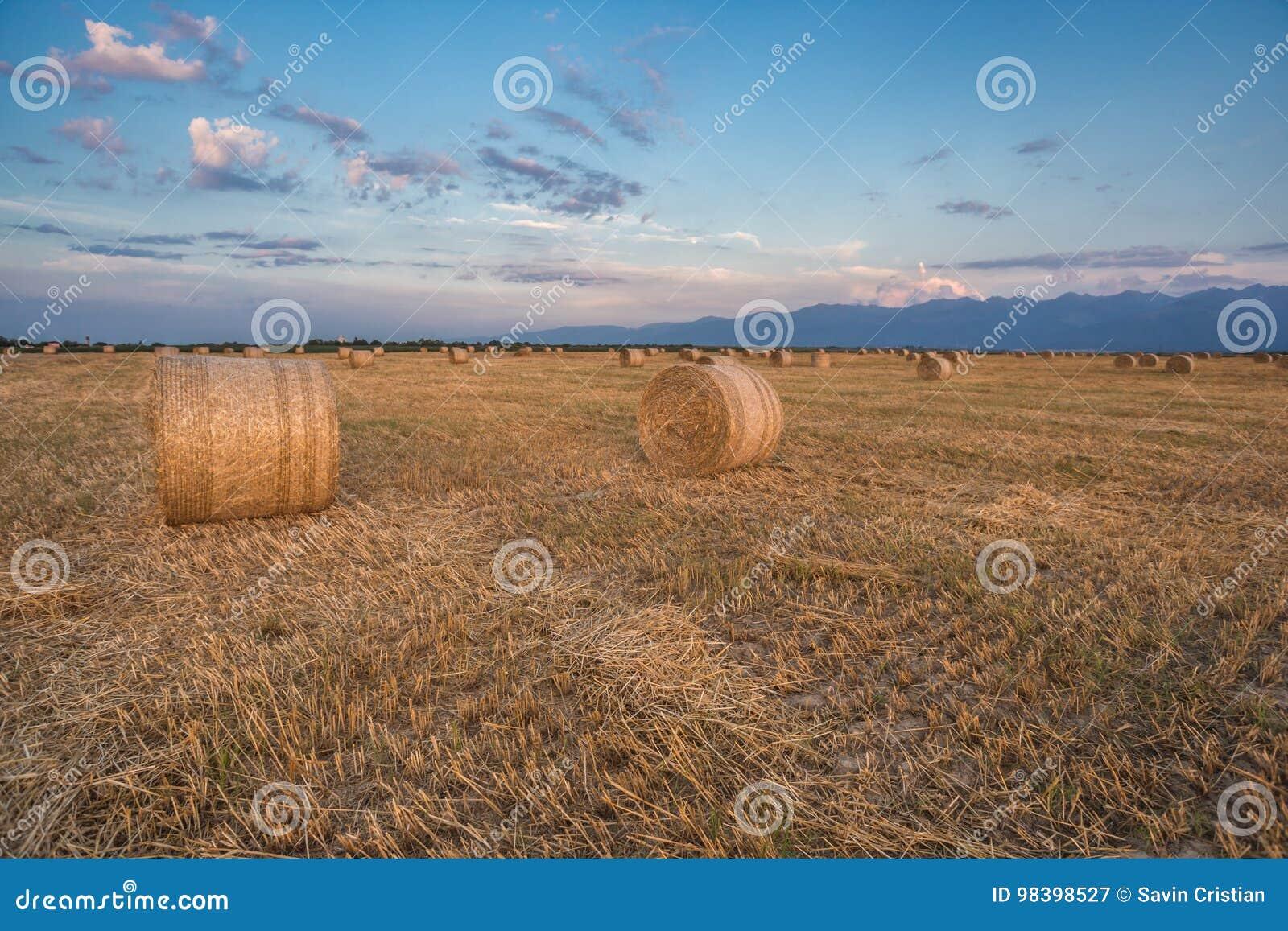 Baled Hay Rolls At Sunset Stock Image Image Of Bale 98398527