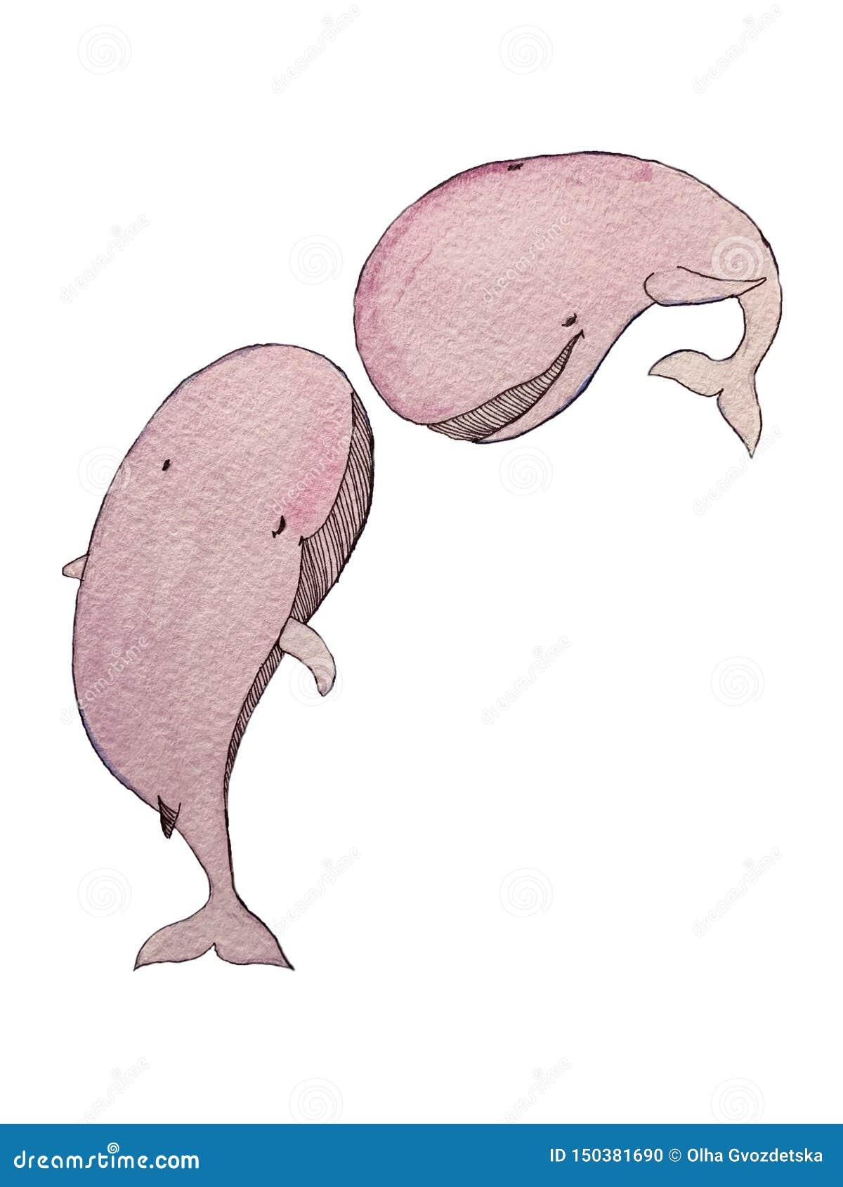 Balene di rosa dell acquerello negli elementi isolati amore su fondo bianco