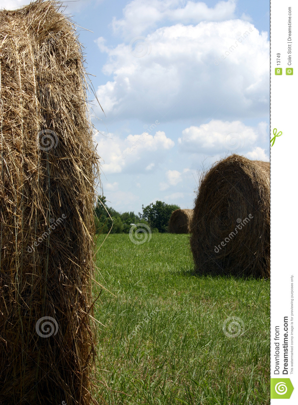 Between the bales
