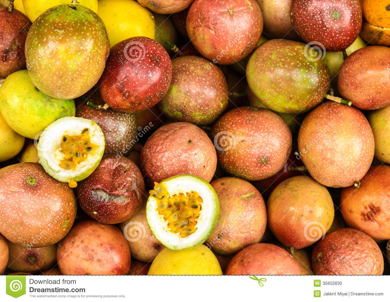 The Bali S Passion Fruits Stock Photo Image Of Core 35602830