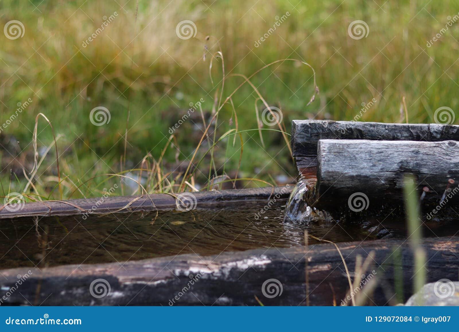 Balia drewniana stara synklina Szwajcaria