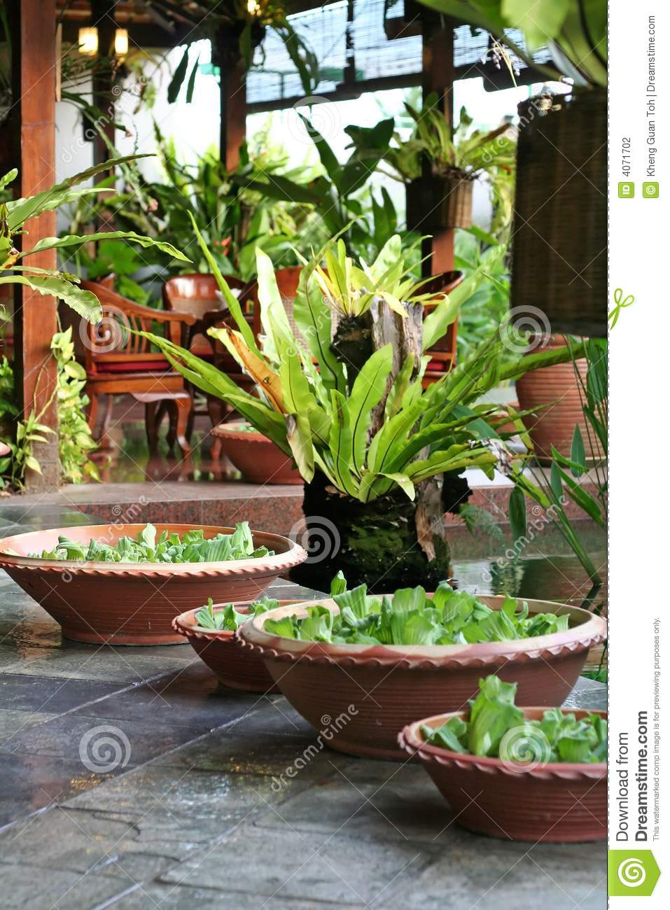 Balinese decor plants stock photography image 4071702 for Bali decoration accessories