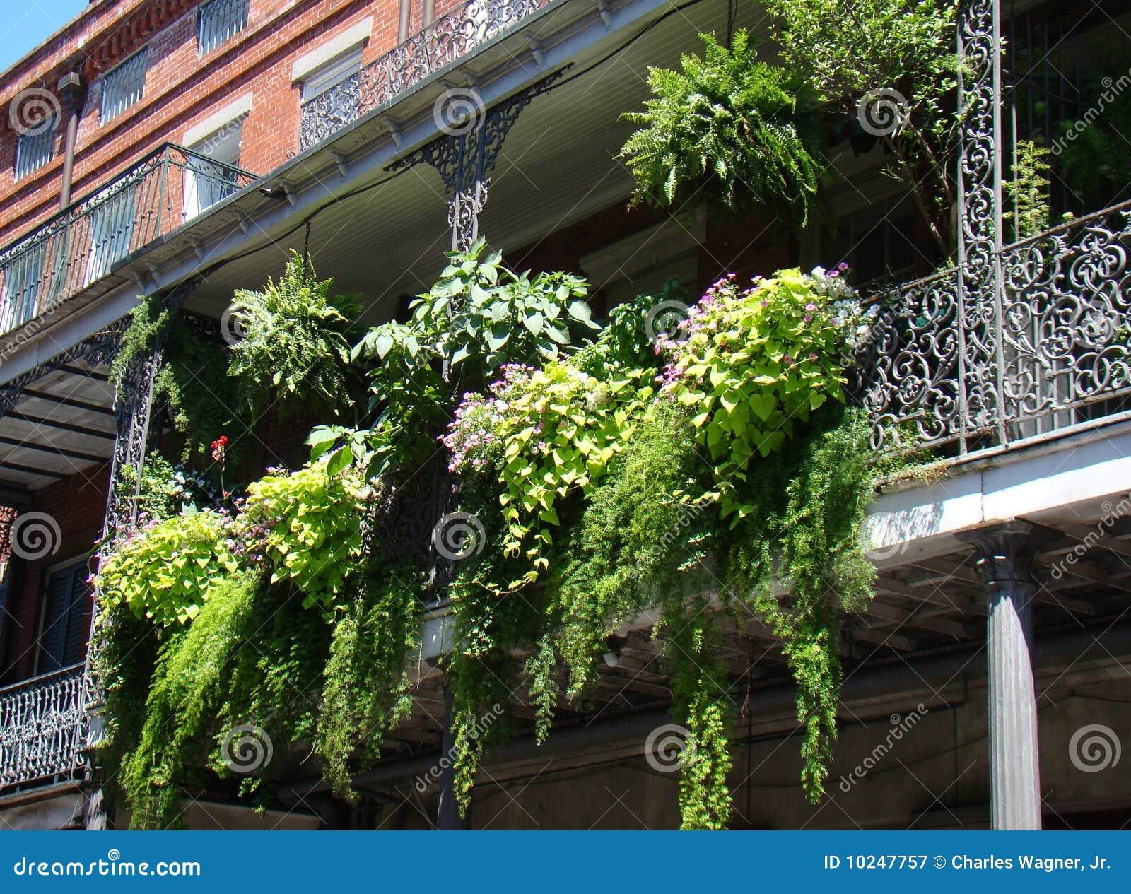 Balkon farn garten stockbild bild von wrought reise for Garten balkon