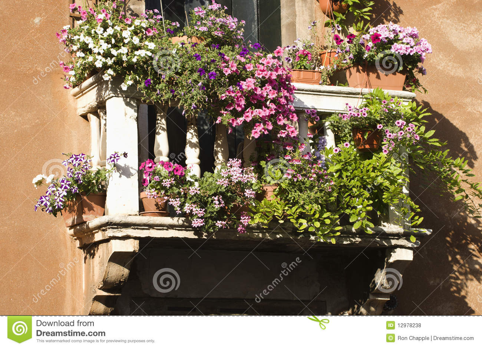 balkon mit blumen stockfoto bild von charme fenster. Black Bedroom Furniture Sets. Home Design Ideas