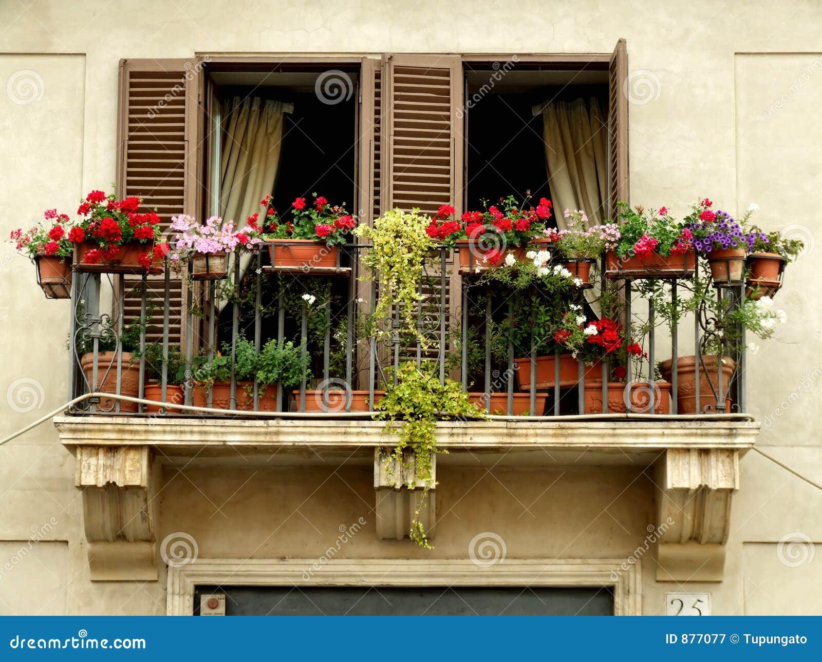 Balkonowi kwiaty