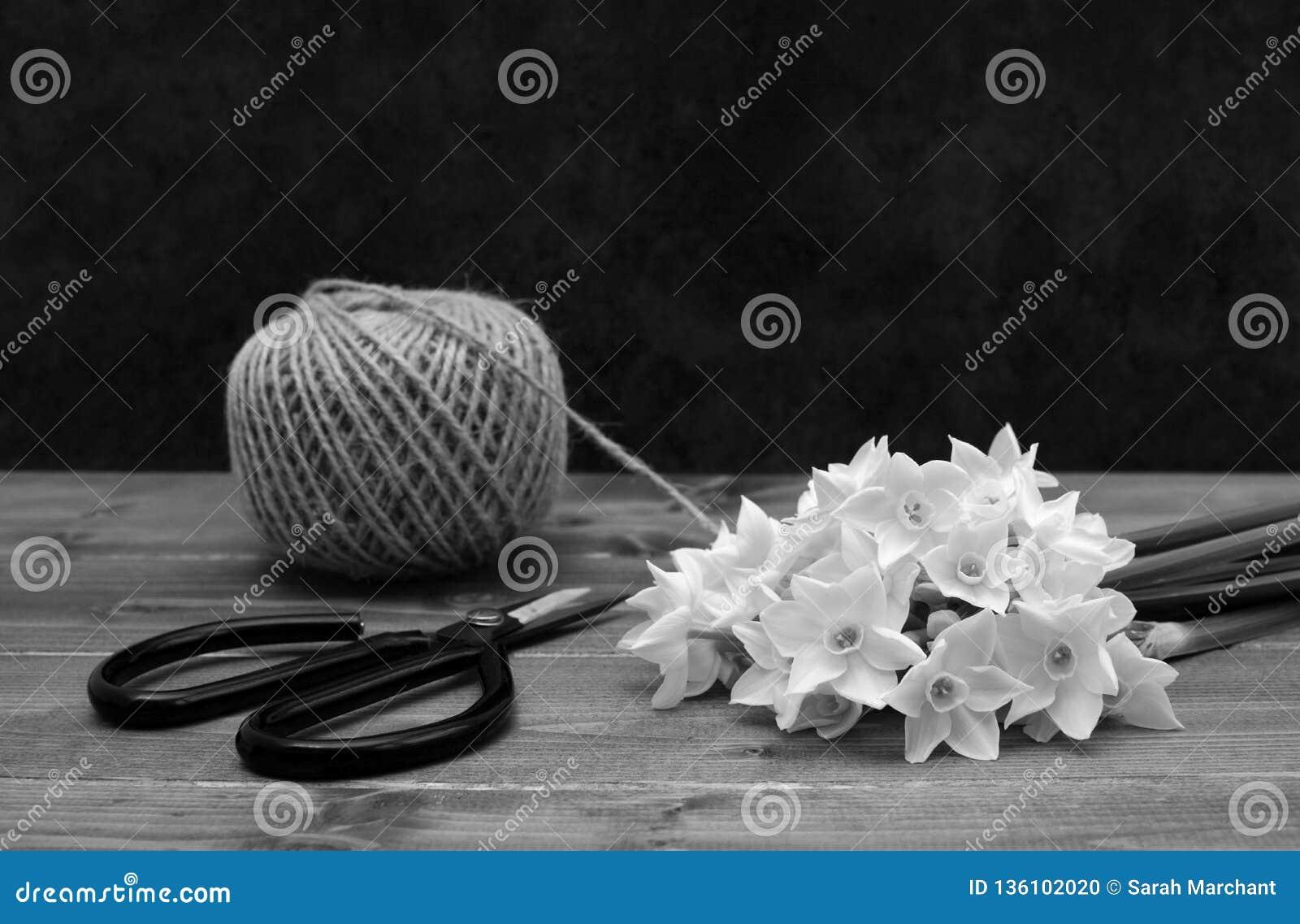 Ball der Schnur mit Scheren und weißen Narzissen blüht