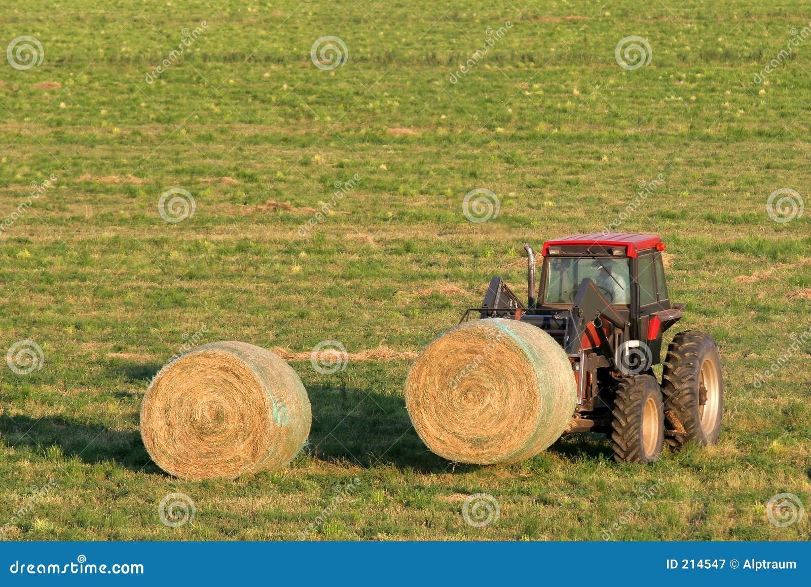 Balle di fieno e del coltivatore
