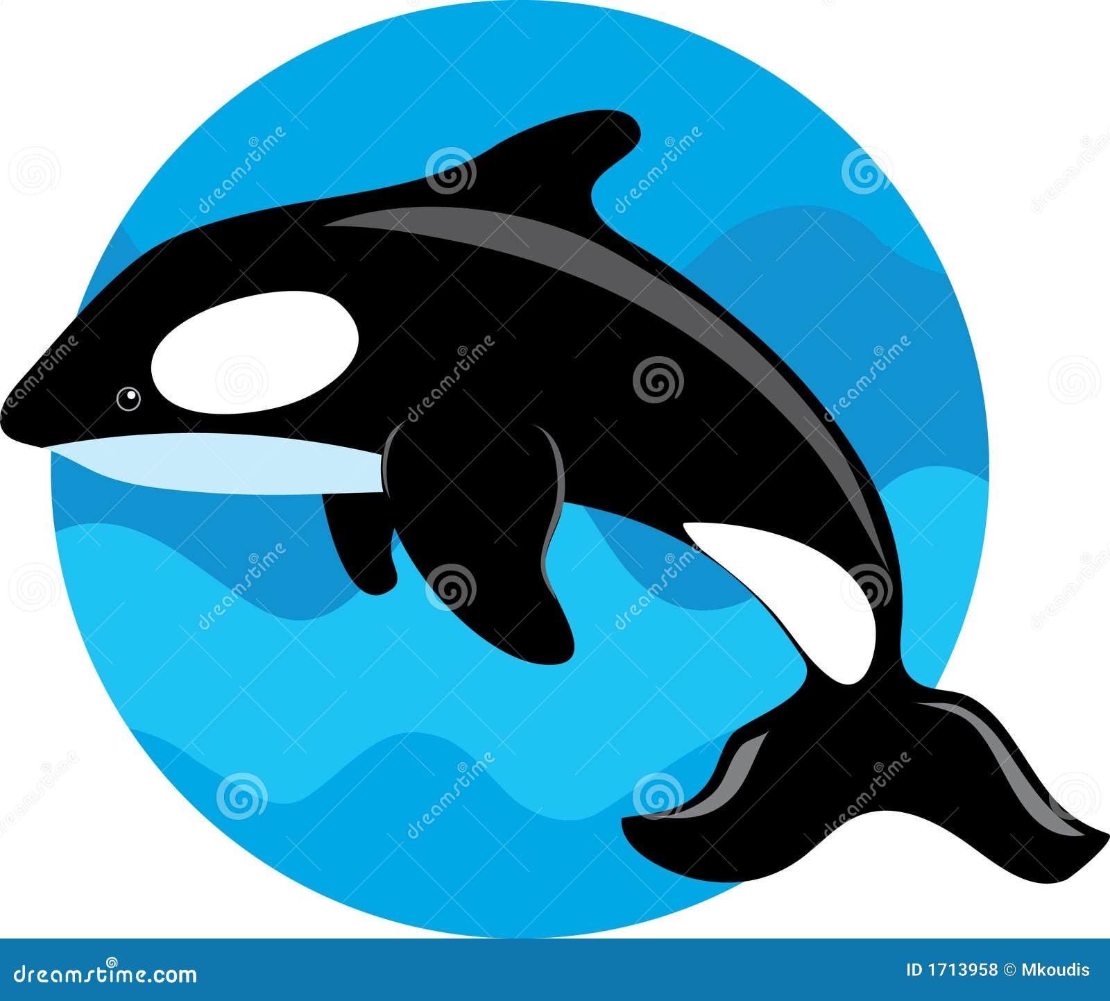 Ballena De La Orca Fotos de archivo libres de regalías - Imagen ...
