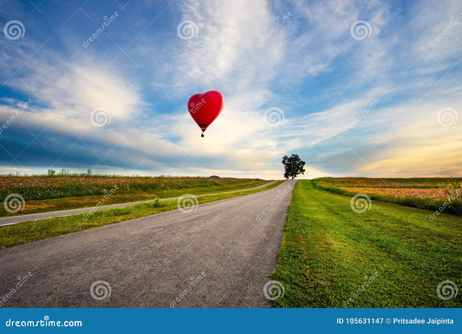 Ballon à air d un rouge ardent sous forme de coeur au-dessus de fleur de cosmos