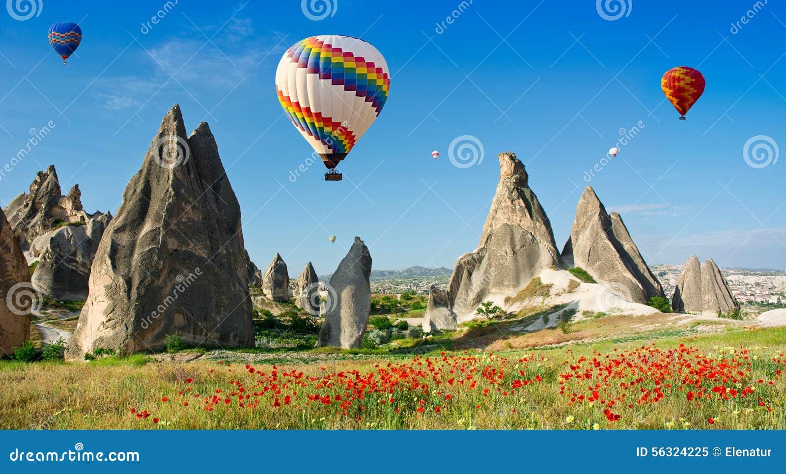 Ballonger för varm luft som flyger över ett fält av vallmo, Cappadocia, Turkiet