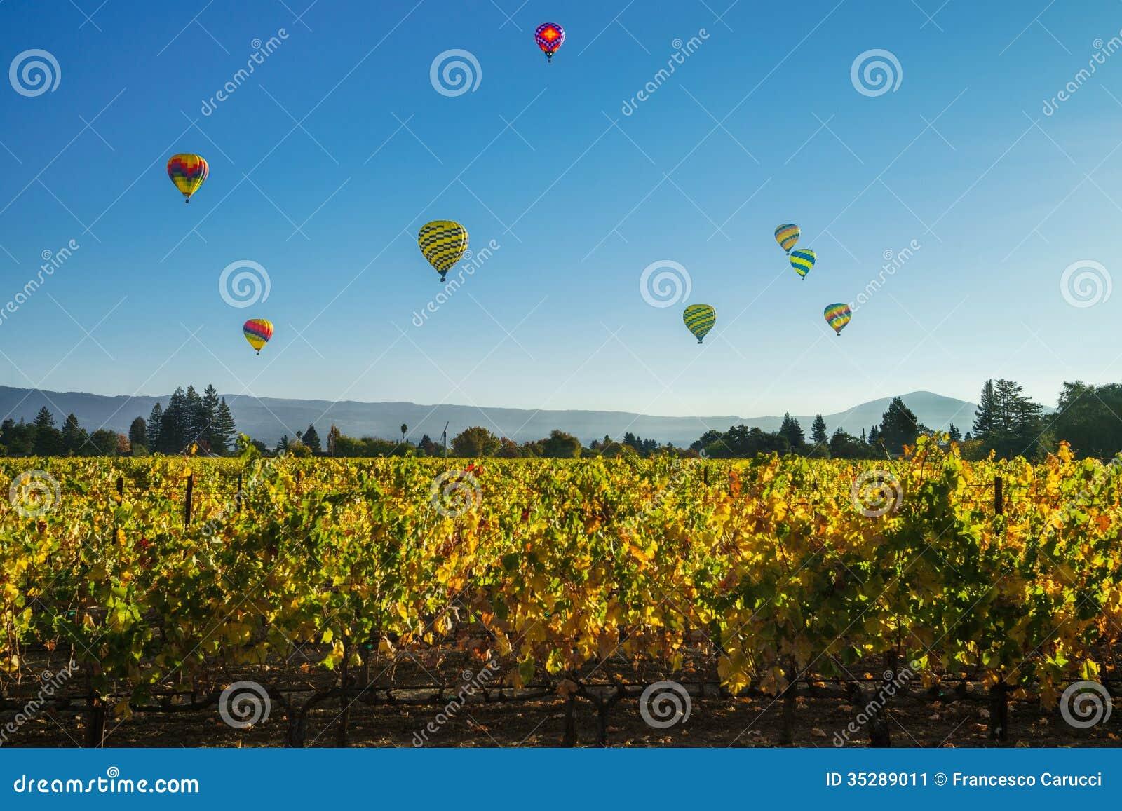 Ballons boven de wijngaard