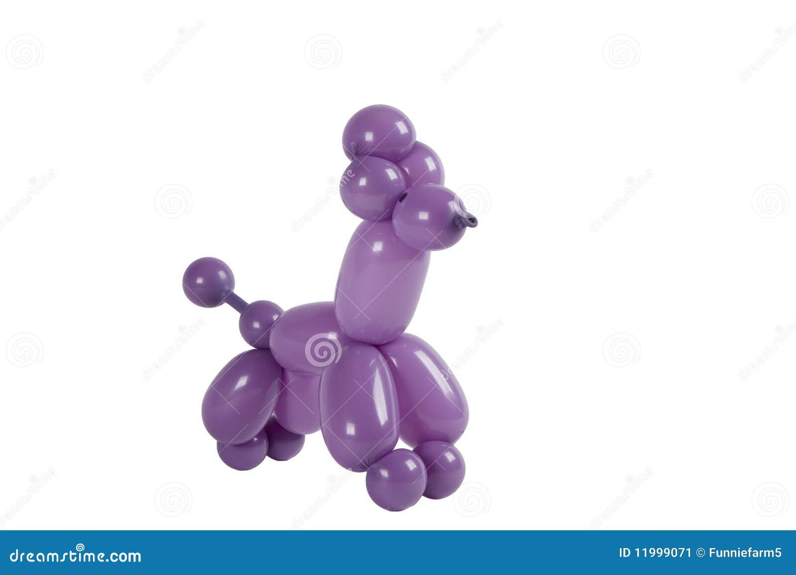 Balloon animal poodle isolated stock image image 11999071