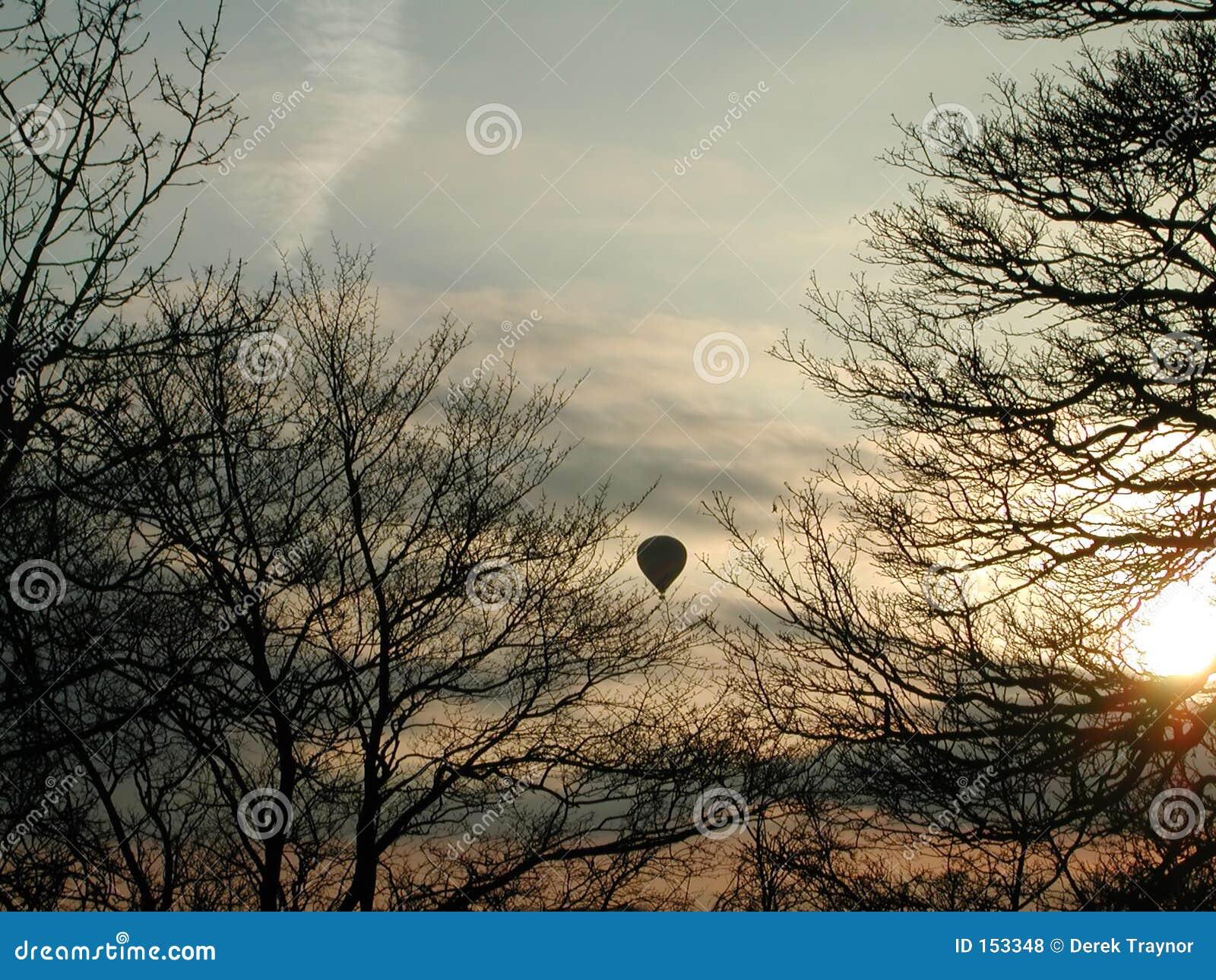 Balloon between trees