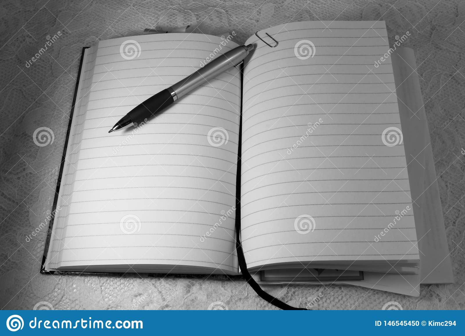 A ballpoint pencil lies on top of an opened diary book
