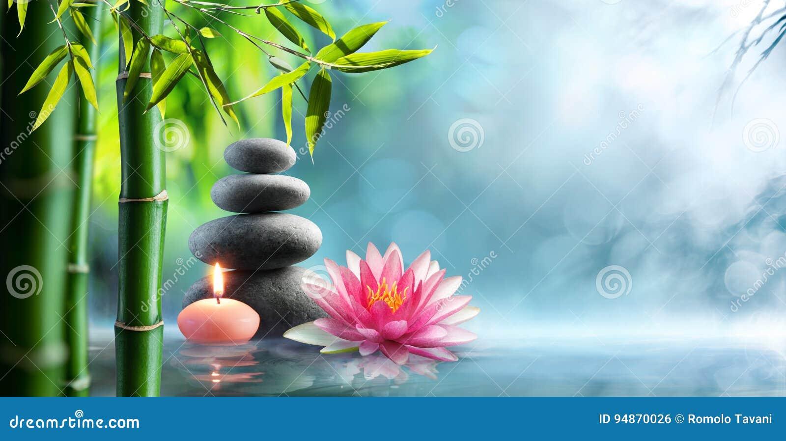 Balneario - terapia alternativa natural con las piedras y Waterlily del masaje