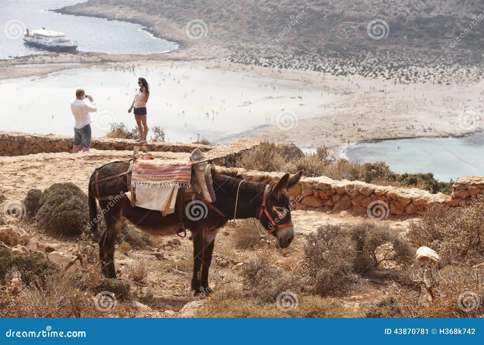 Balos beach and donkey in Crete. Mediterranean landscape. Greece
