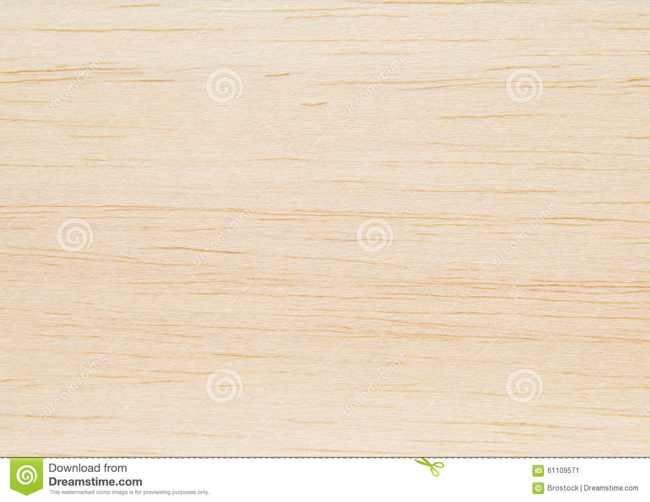balsa wood stock image image of birch feature people 61109571. Black Bedroom Furniture Sets. Home Design Ideas