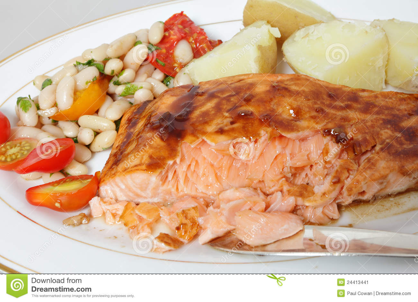 Balsamic Glazed Salmon Fillet Stock Image - Image: 24413441