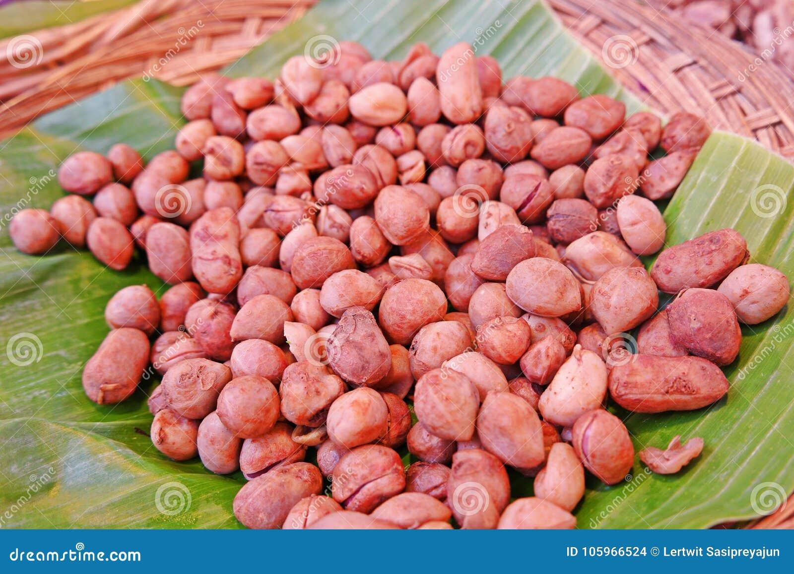 Bambarra de Aardnoot, in West-Afrika is voortgekomen, zijn peulen rijpt ondergronds als pinda die