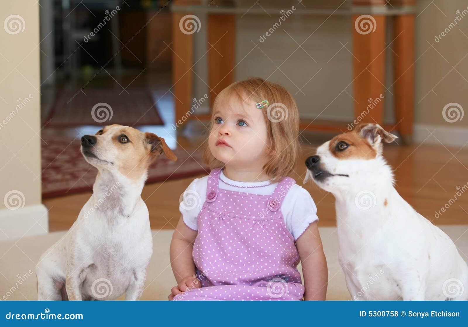 Download Bambina con i suoi cani fotografia stock. Immagine di bambini - 5300758