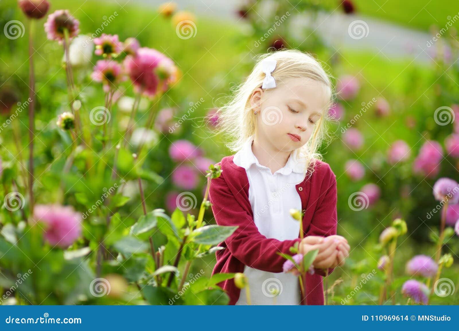 Bambina sveglia che gioca nel campo sbocciante della dalia Bambino che seleziona i fiori freschi nel prato della dalia il giorno