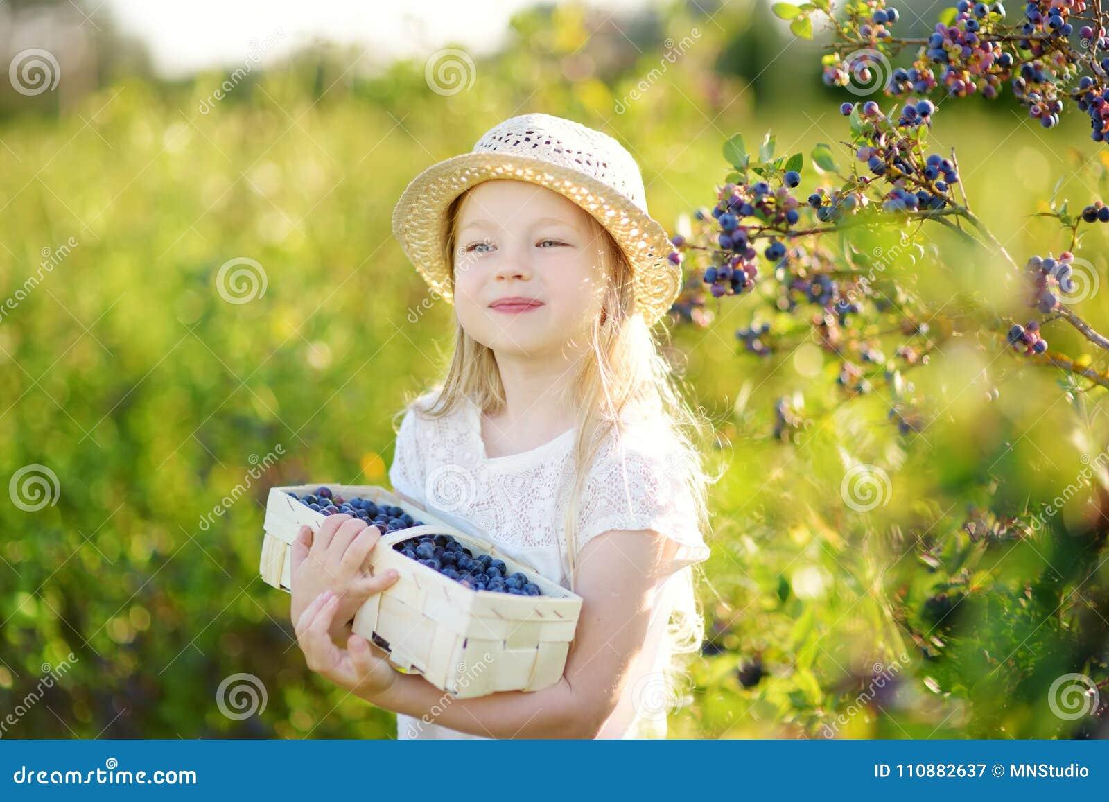 Bambina sveglia che seleziona le bacche fresche sull azienda agricola organica del mirtillo il giorno di estate caldo e soleggiat