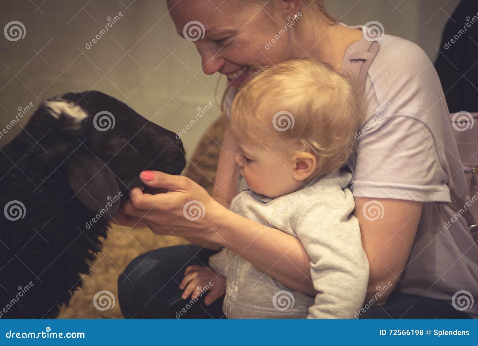Bambino con la madre che segna un animale allo zoo di coccole