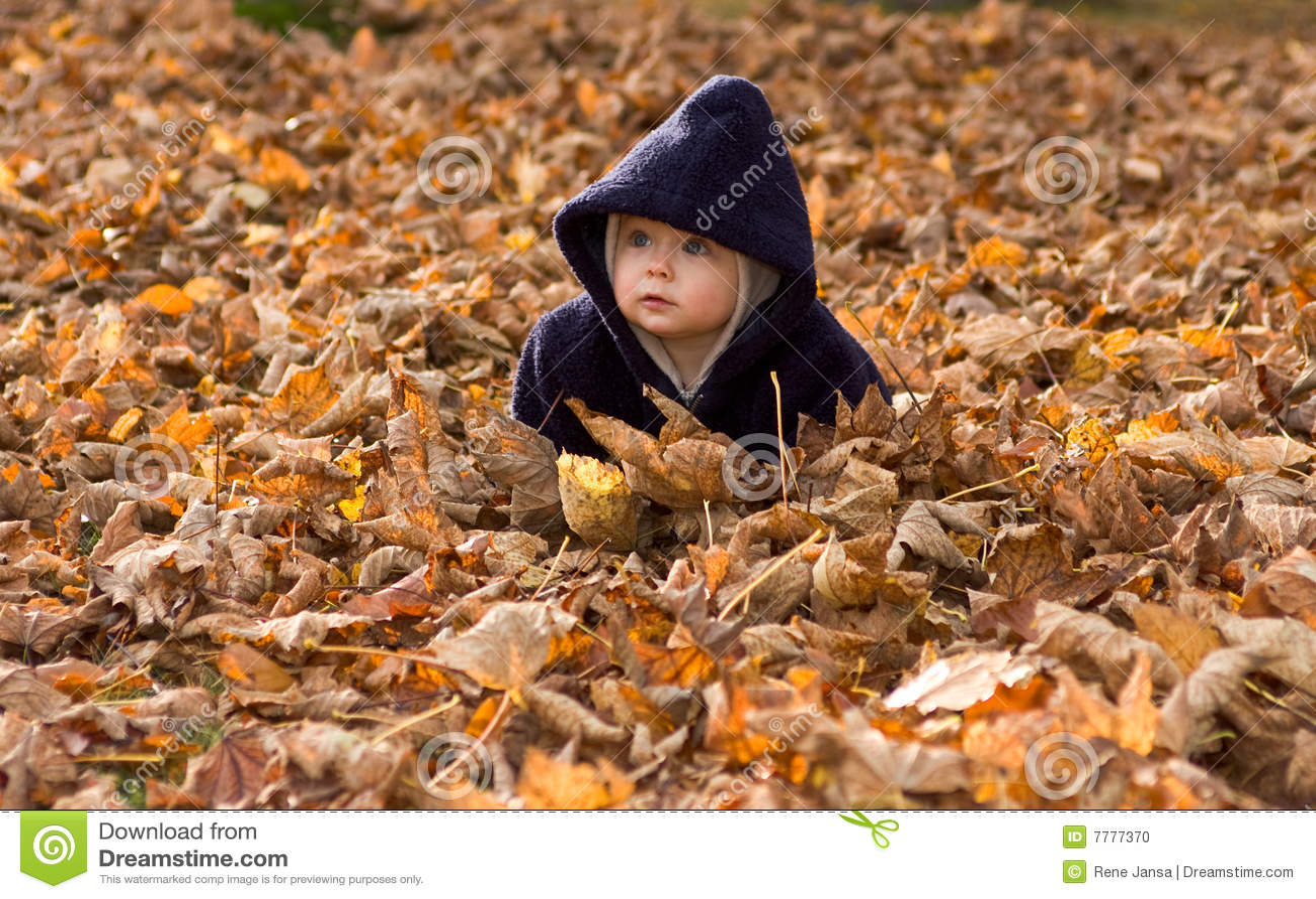 Bambino coperto dai fogli di autunno