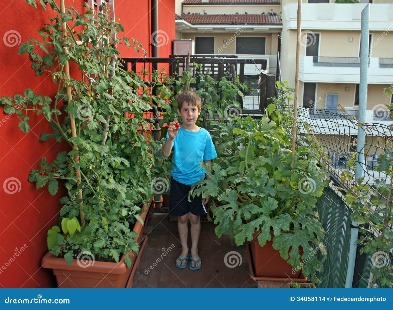 Bambino Sul Suo Frutteto In Effetti Con I Vasi Su Un Terrazzo Di Un ...