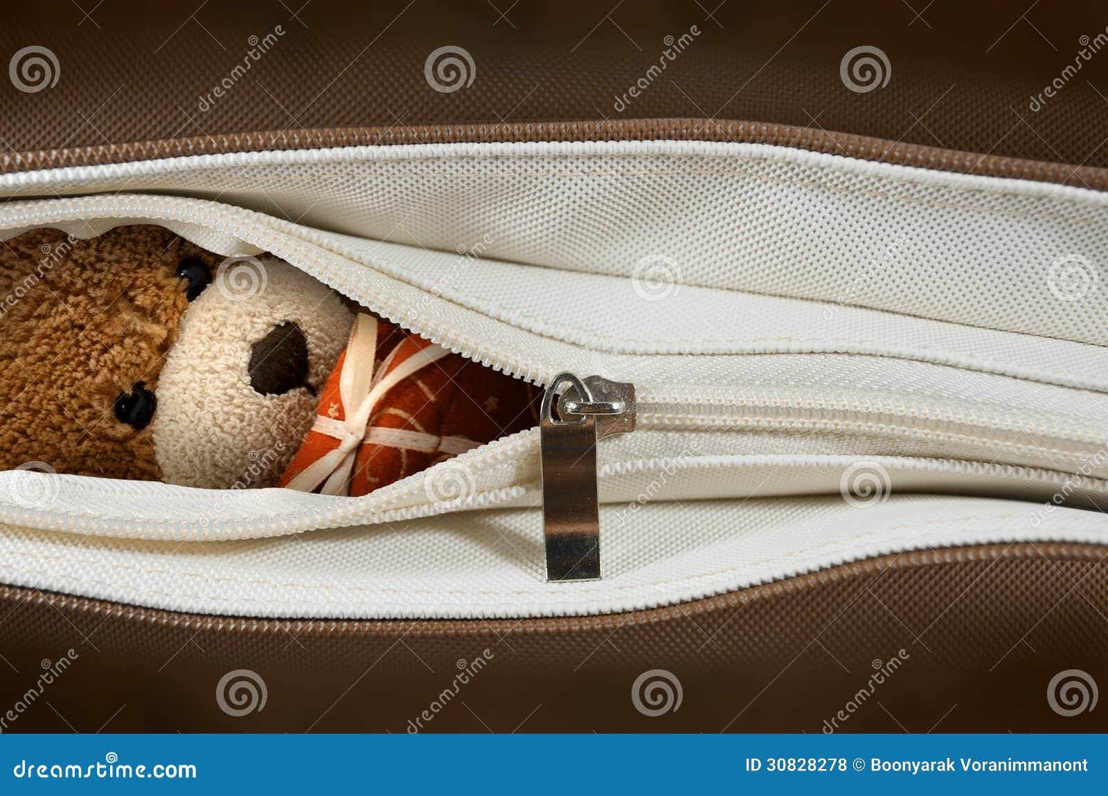 Bambola dell orso in una borsa