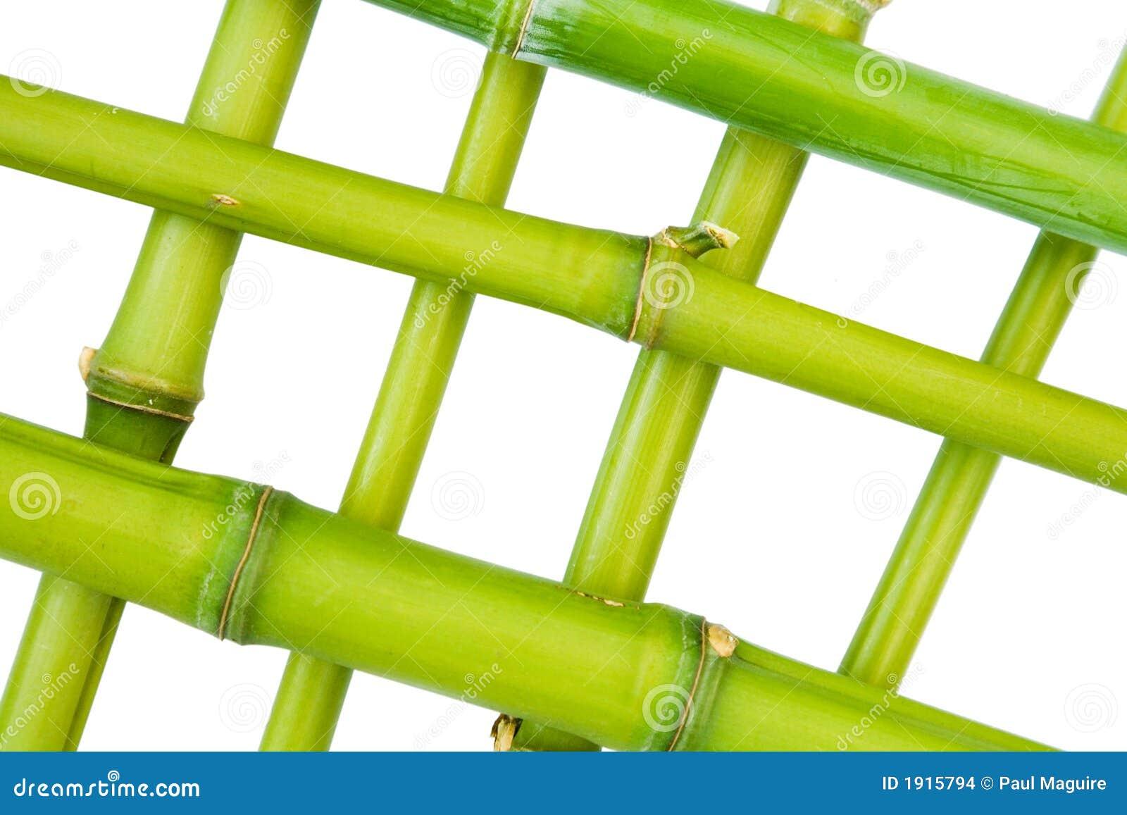 Bamboo рамка