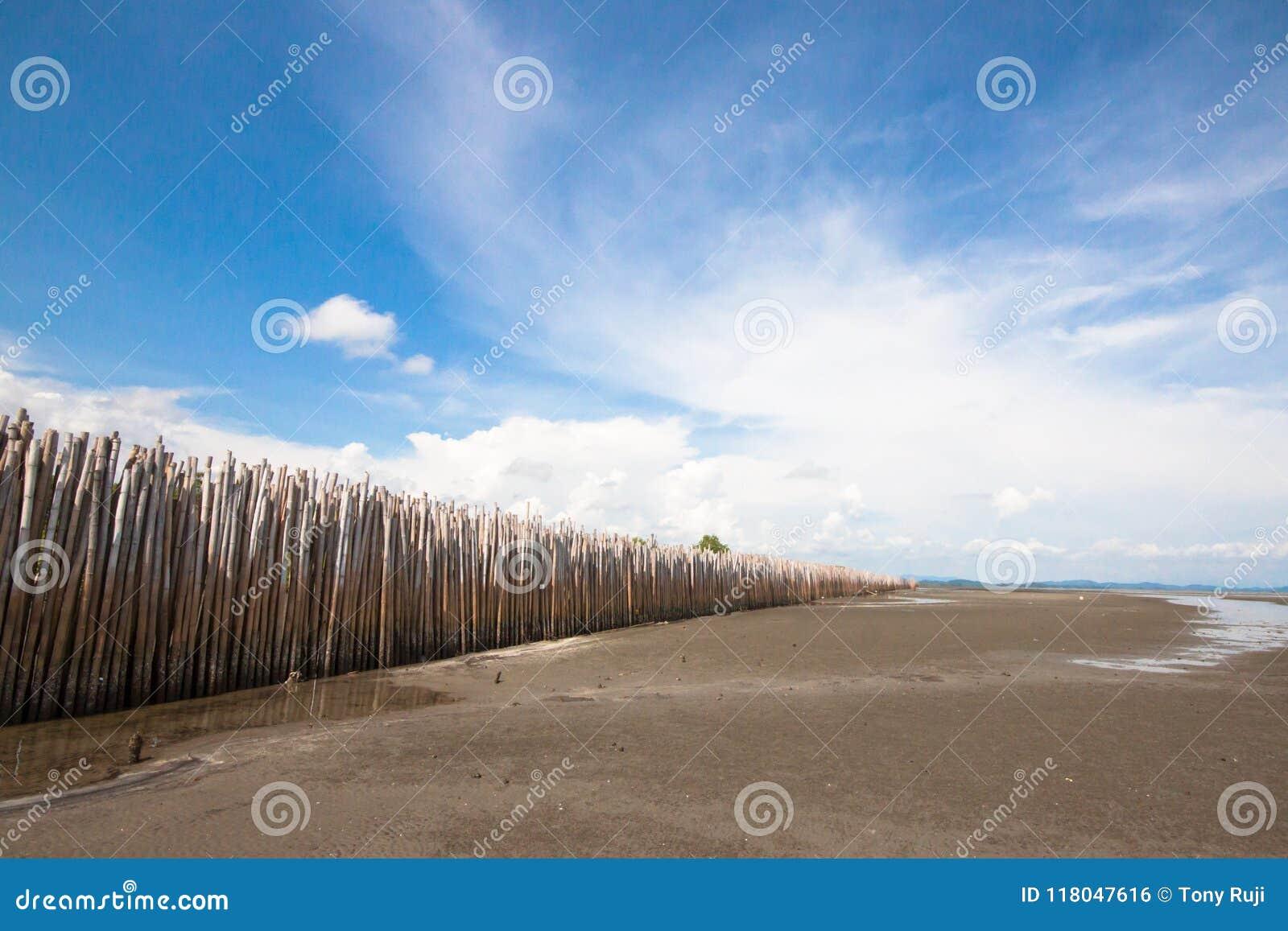 Bamboo barrier