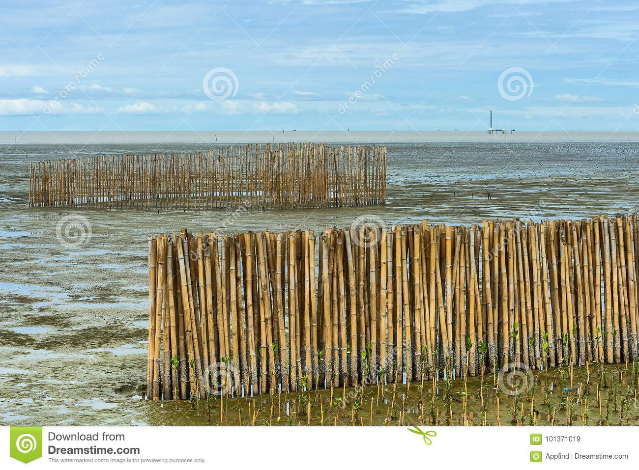 Bamboo barrier and rock dam.