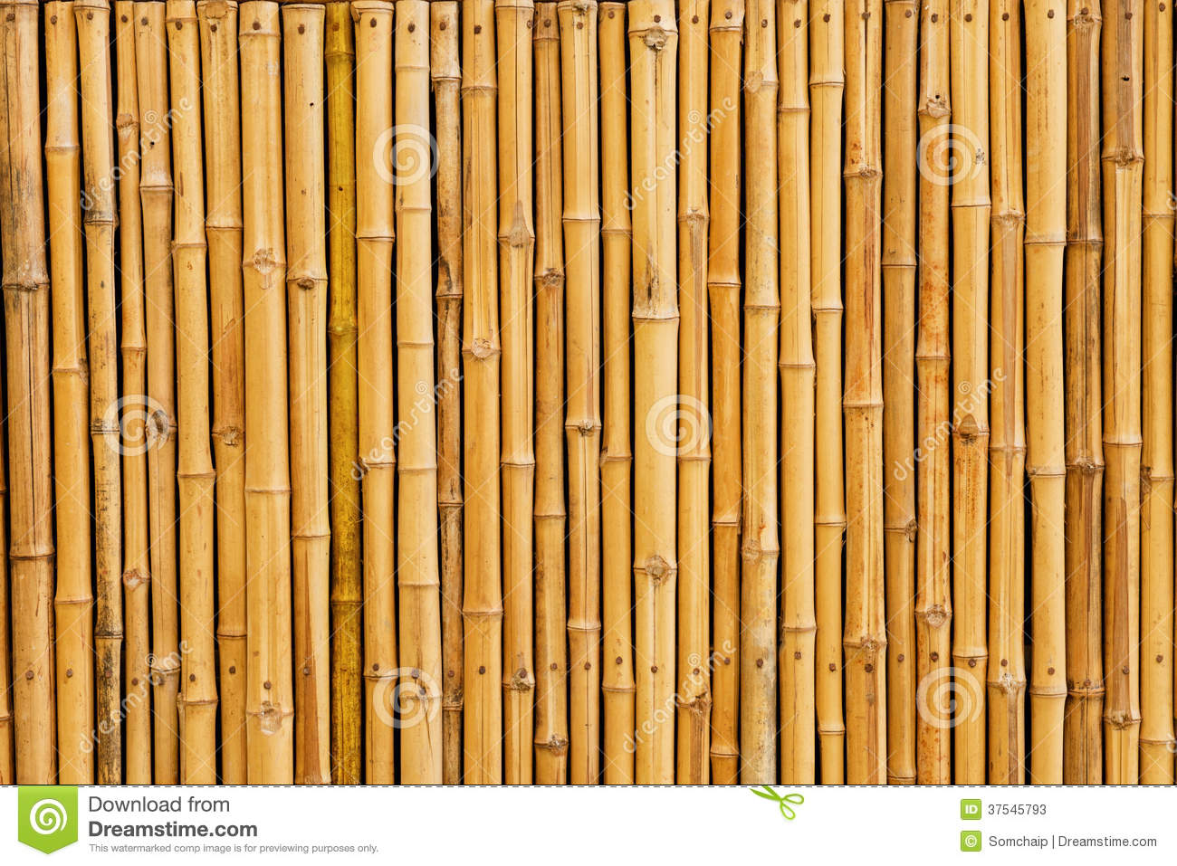 Bamboo Fence Background Stock Photos Image 37545793